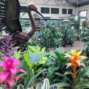Metal garden art (cranes) for indoors + out