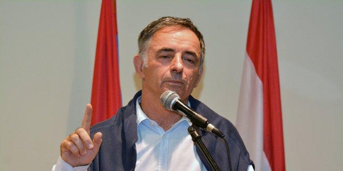 pupovac, hrvatski jezik, sdss