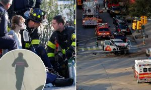 teroristički napad, new york, allahu ekbar, imigranti
