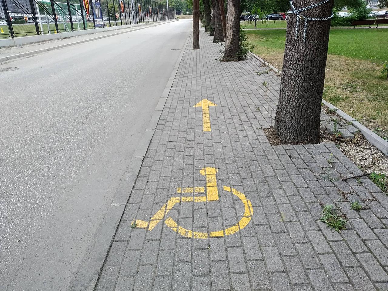 Инвалидска патека со препреки