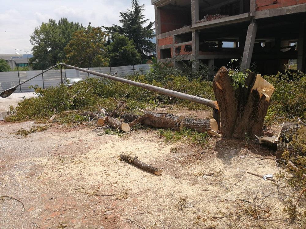 НОВ МАСАКР ВО СКОПЈЕ: Исечени дрва позади СРЦ Кале