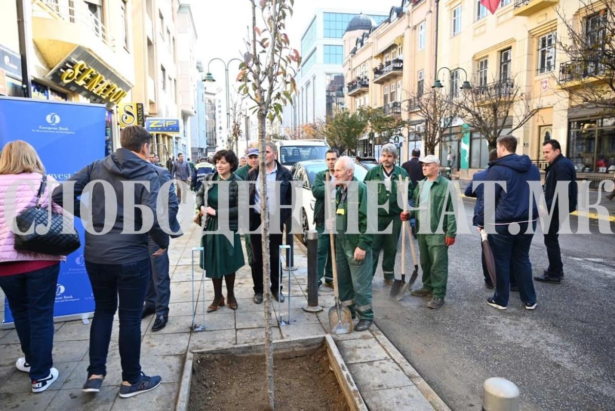 Шилегов: Ние не сечеме дрва за да градиме згради