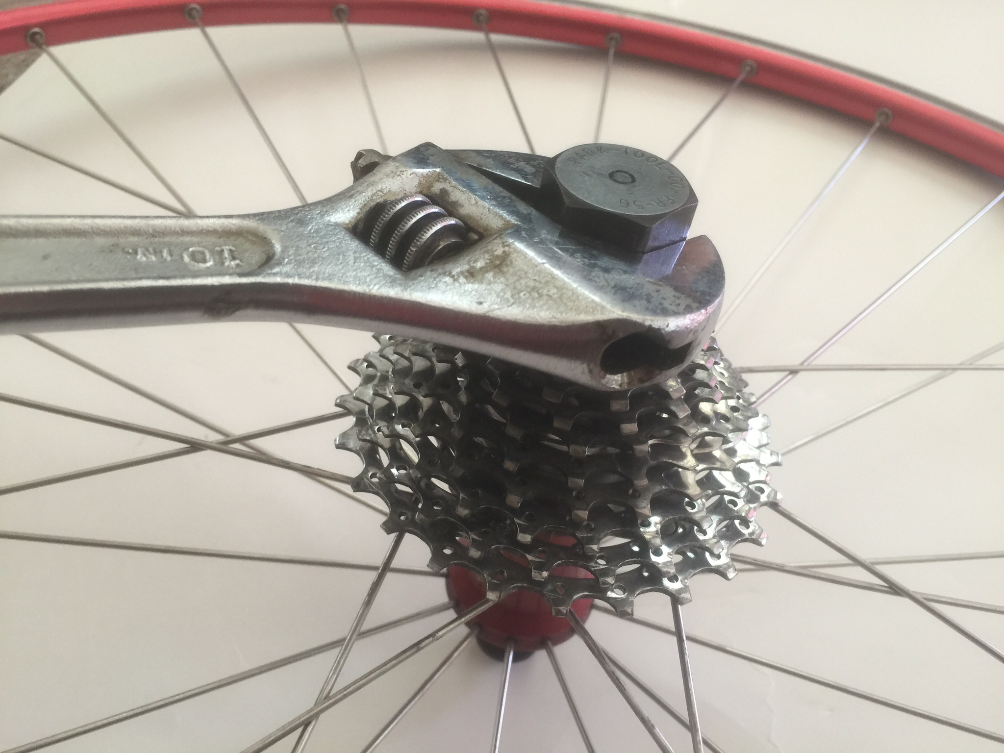 How To Remove Clean Your Bike S Cassette Slo Cyclist An