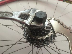Use a chain whip to remove your bike's cassette