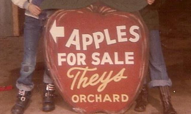 theys orchard