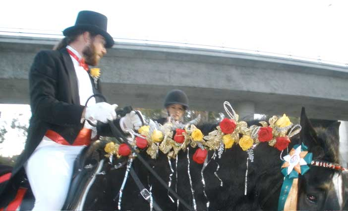 Bravo and Phillip at the 2011 Tournament of Roses Parade