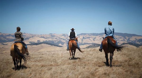 Outback Trail Ride View