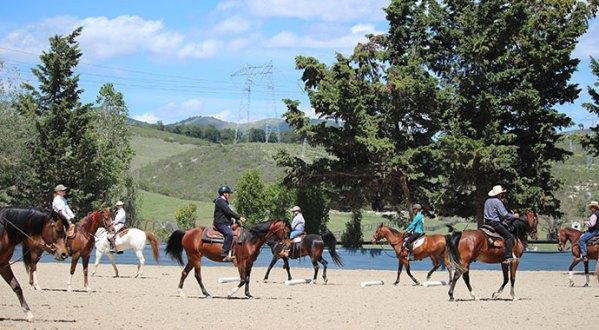 Varian Arabians Hands On Clinic Ground Poles