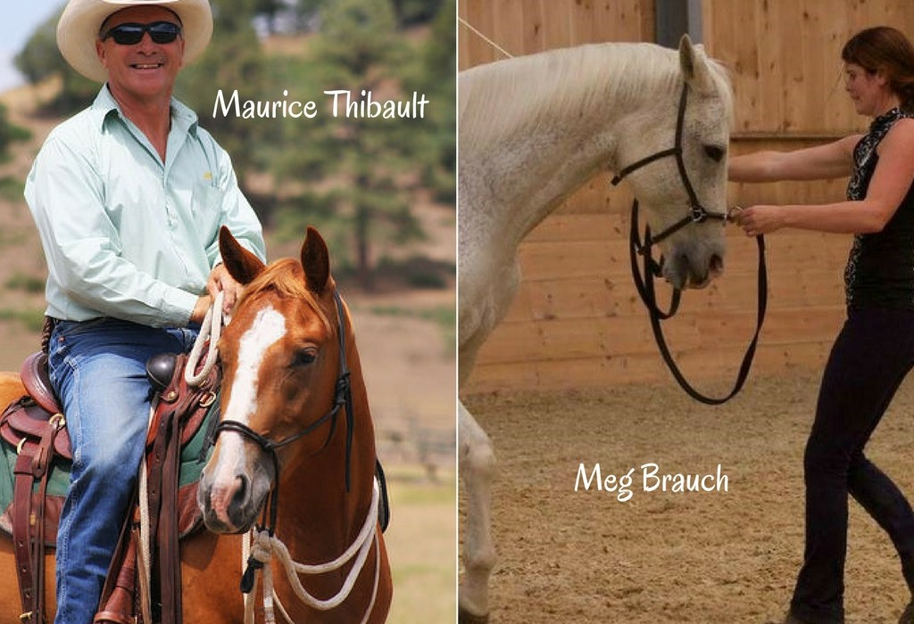 "Improve Your Horsemanship with Two ""Can't Miss"" Clinics 