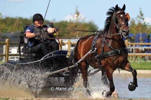Local Para-Equestrian Driver, Diane Kastama, Speeds Around World Championship Course | SLO Horse News