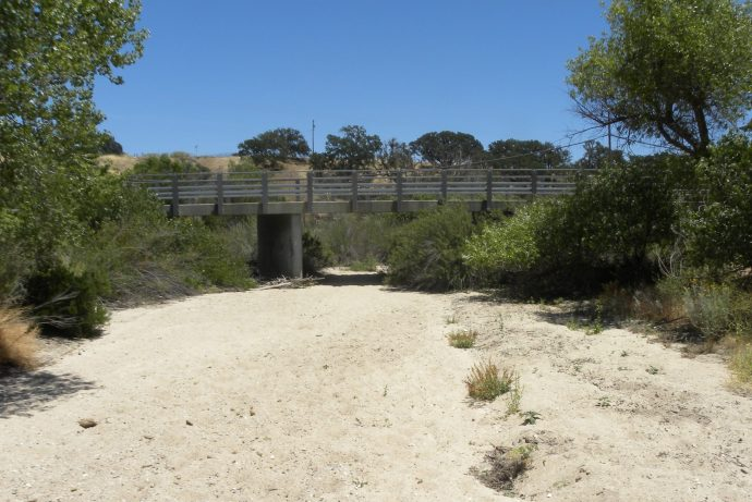 Riding from Cass Winery to Sculpterra Winery : Riding the SLO County Trails   SLO Horse News