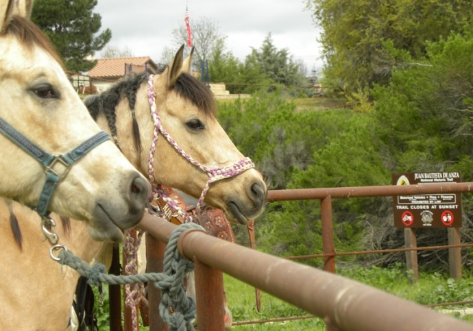 Ride and Dine Trail Ride The New Cowboy Way : Riding the SLO County Trails | SLO Horse News