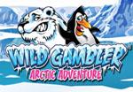slot wild gambler 2 arctic adventure