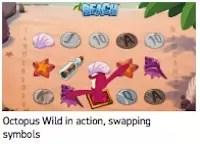 Beach octopus 2