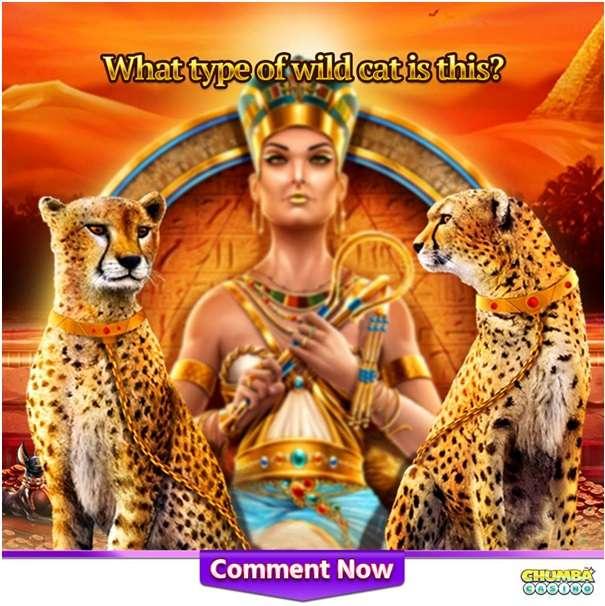 Chumba Casino Facebook contest