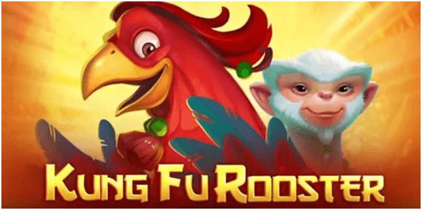 Kung Fu Rooaster