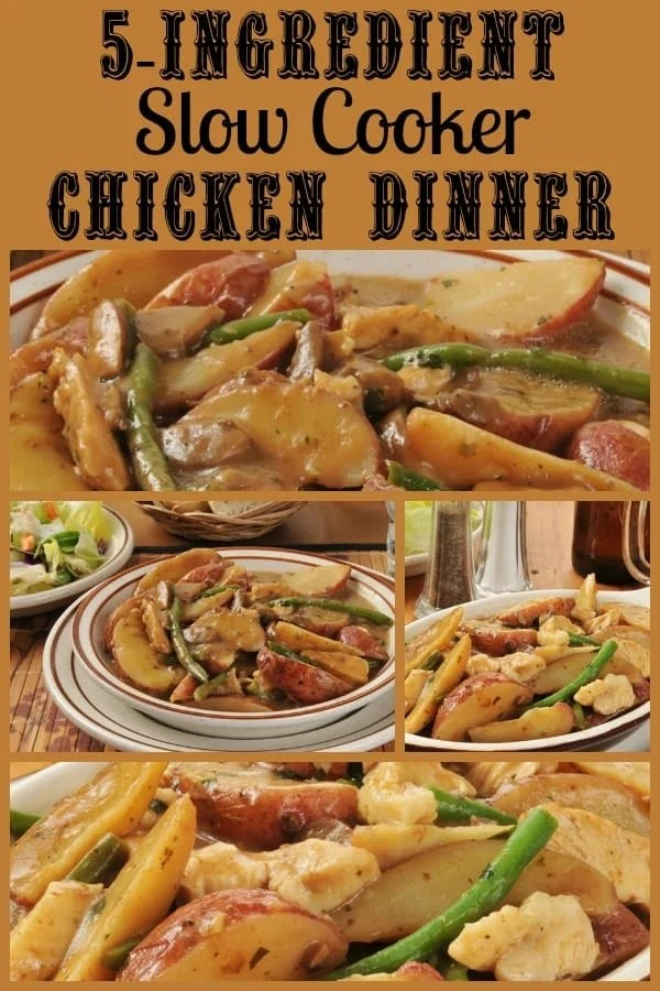 5-Ingredient Slow Cooker Chicken Breast Dinner! Find this & more yummy recipes @ http://www.slowcookerkitchen.com