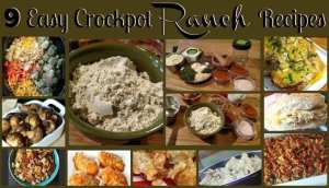 9 Easy Crockpot Ranch Recipes! Find this & more delicious recipes @ https://www.slowcookerkitchen.com