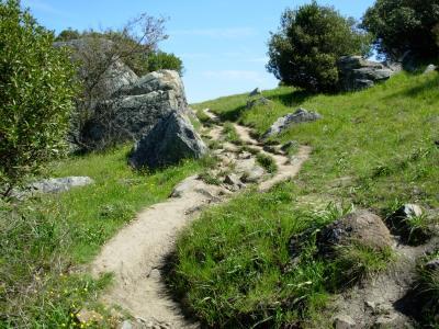 ringuphillpath