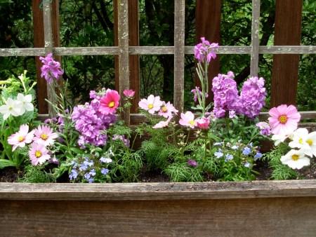 Garden-Aspenbox