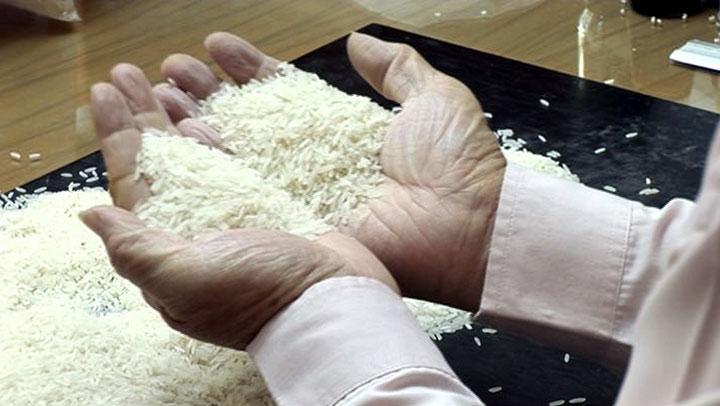 Avec qui Noé riait – L'Arche du quinoa et du riz le 09 mai 2012