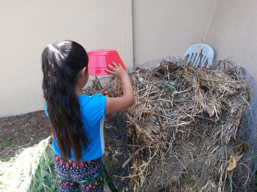 This student is composting apple cores in the compost heap in the garden.