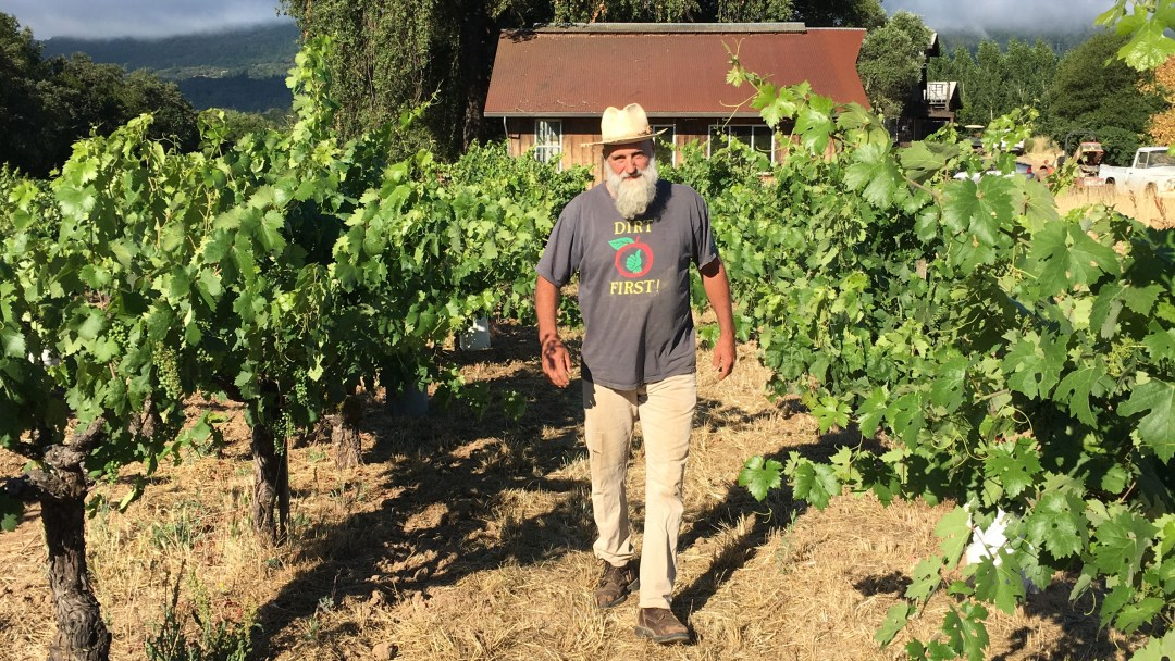Will Bucklin walking in his Field Blend vineyard