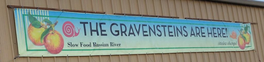 Gravenstein harvest has begun