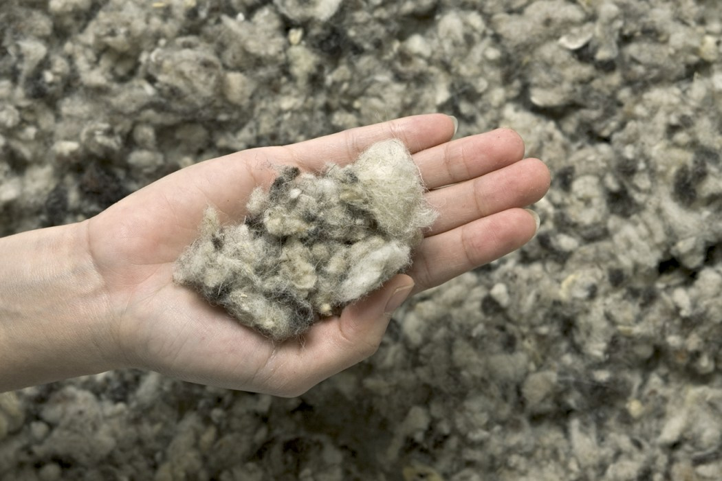 wool clean building material