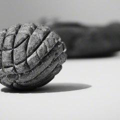 Photos: Natural Motion at Moderna Museet