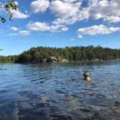 10 Places to Keep You Calm In and Around Stockholm