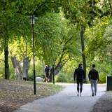 10 Romantic Date Ideas in Stockholm