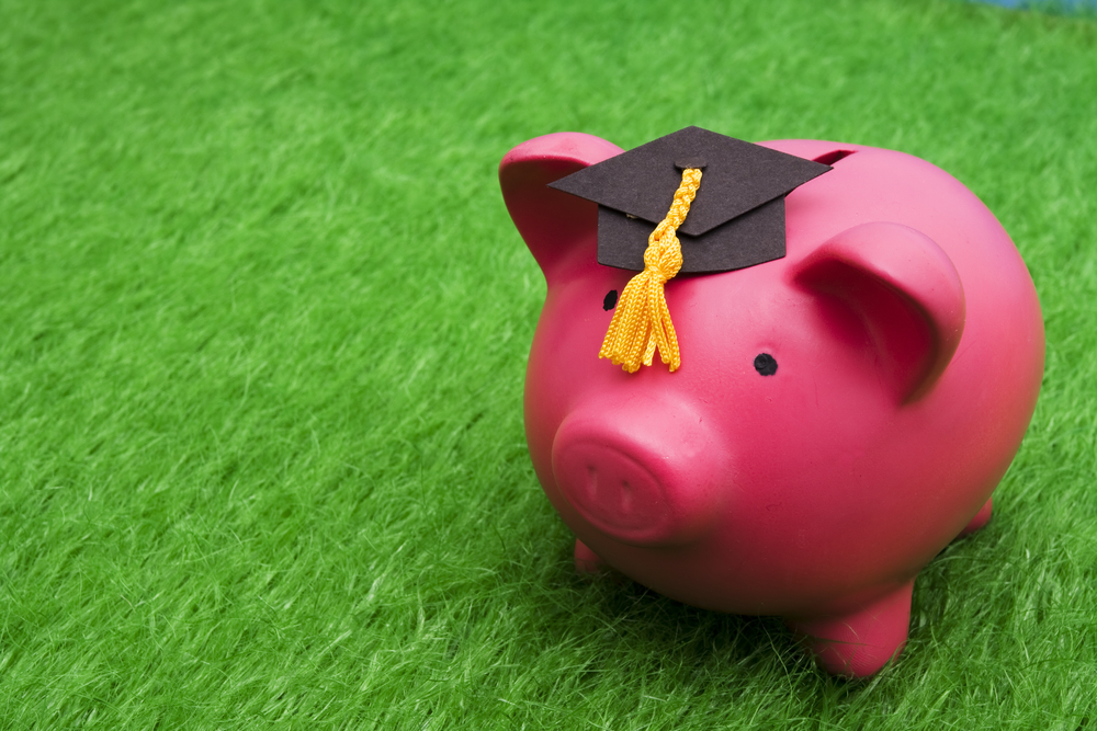 Student loan payment lawn care