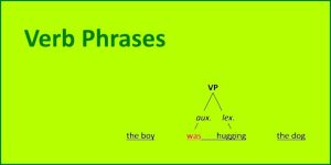 Verb Phrases