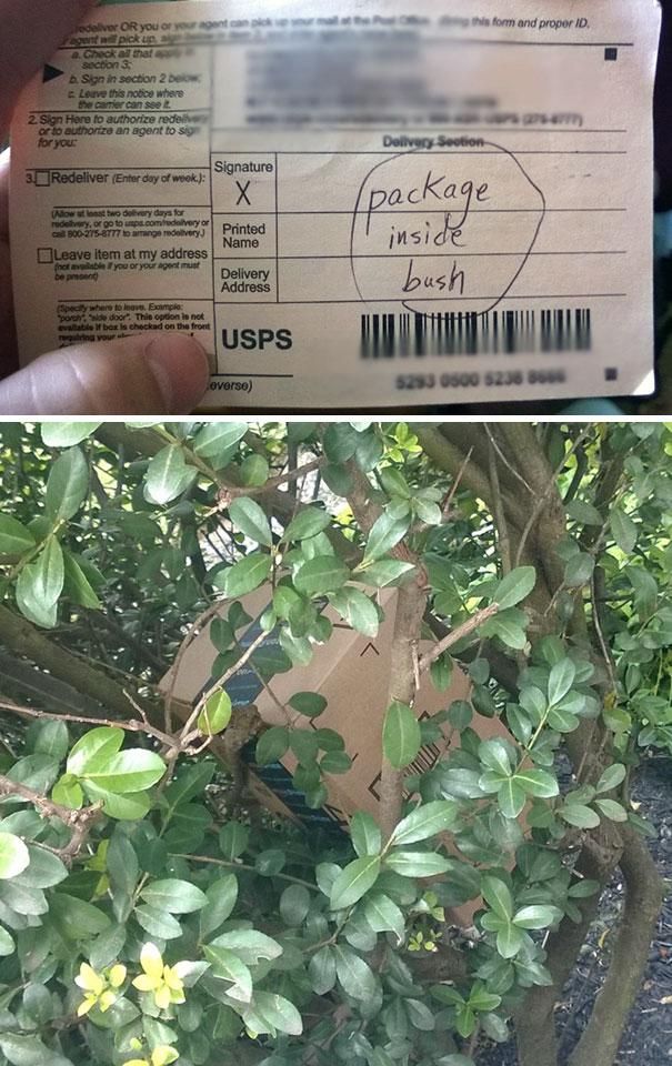 fedex-ups-delivery-fails-26-57c58477af5b3__605