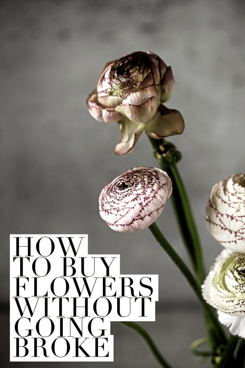 I Used To Live Canberra In The Early 2000s And Back Then Florists Were Notoriously Expensive If You Wanted Buy A Bunch Of Flowers For Your Mates