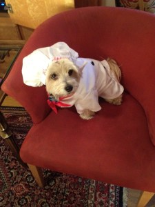 Chef Peanut relaxes at home before starting work for the day.