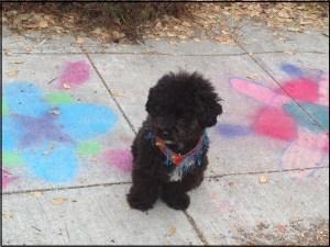 chalk art a
