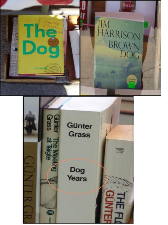 boring dog titles