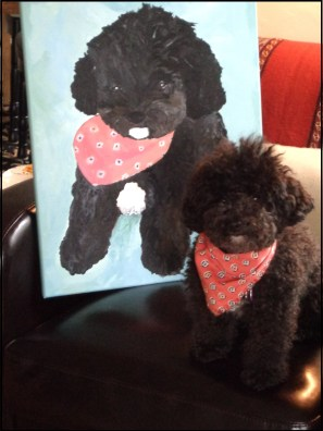 Small Poodle at Large | Pawtrait with Harper