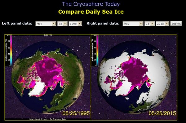 Y2Kyoto: I'll Miss The Polar Ice Caps - Small Dead Animals