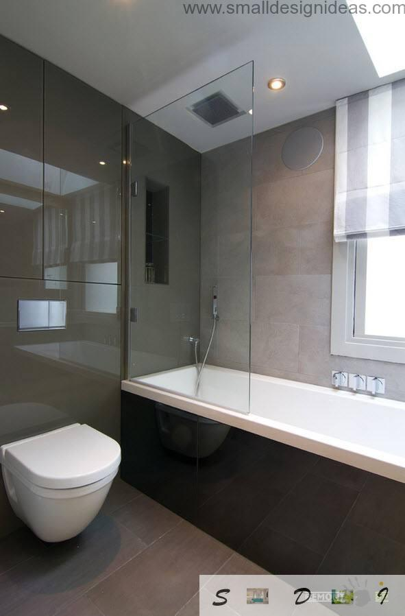 Toilet And Bath Design Ideas