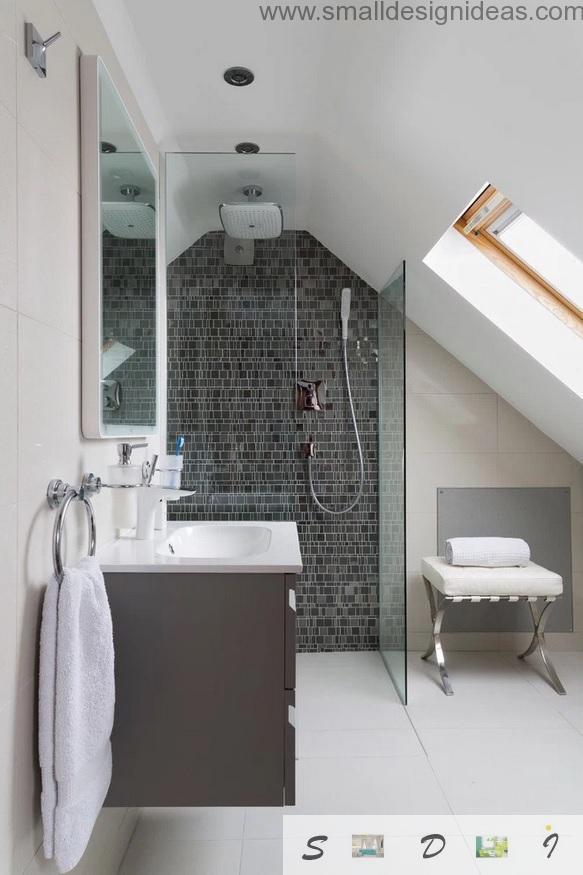 Extra Small Bathroom Design Ideas on Small Bathroom Ideas With Shower Only id=13852
