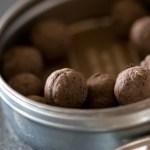 Guerrilla Gardening – Seed Bombs & Seed Balls