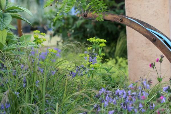 Ecover RHS Hampton Court Flower Show