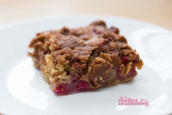 raspberry cake vegan