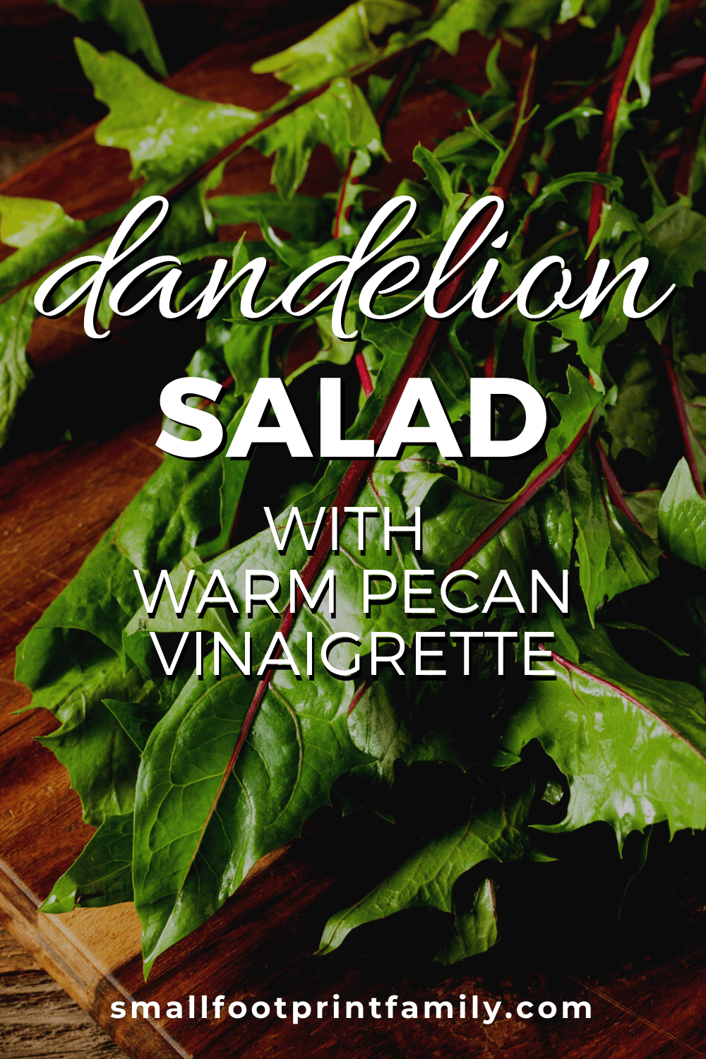 This elegant and delicious way to serve fresh dandelion greens, will help you get the most out of them while they are in season.#vegan #vegetarian #foraging #organicgarden #homestead #paleo #recipe #dandelion #salad