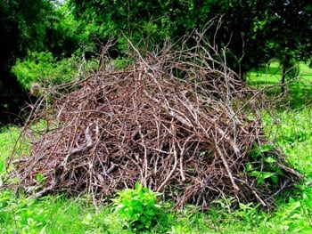 brush pile for composting