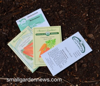 First seeds planted for my fall garden, plus one last summer herb.