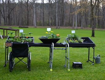 "Wheelchair and walker by garden at table height that holds three container garden ""beds""."